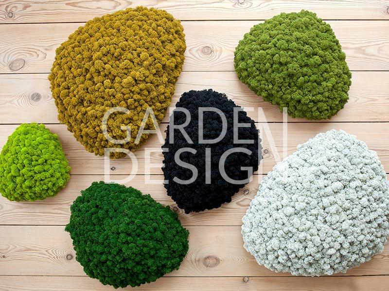 dogal yosun, stabilize yosun, dikey bahçe, dikey bahce, doğal yosun, moss, mumyalanmış yosun